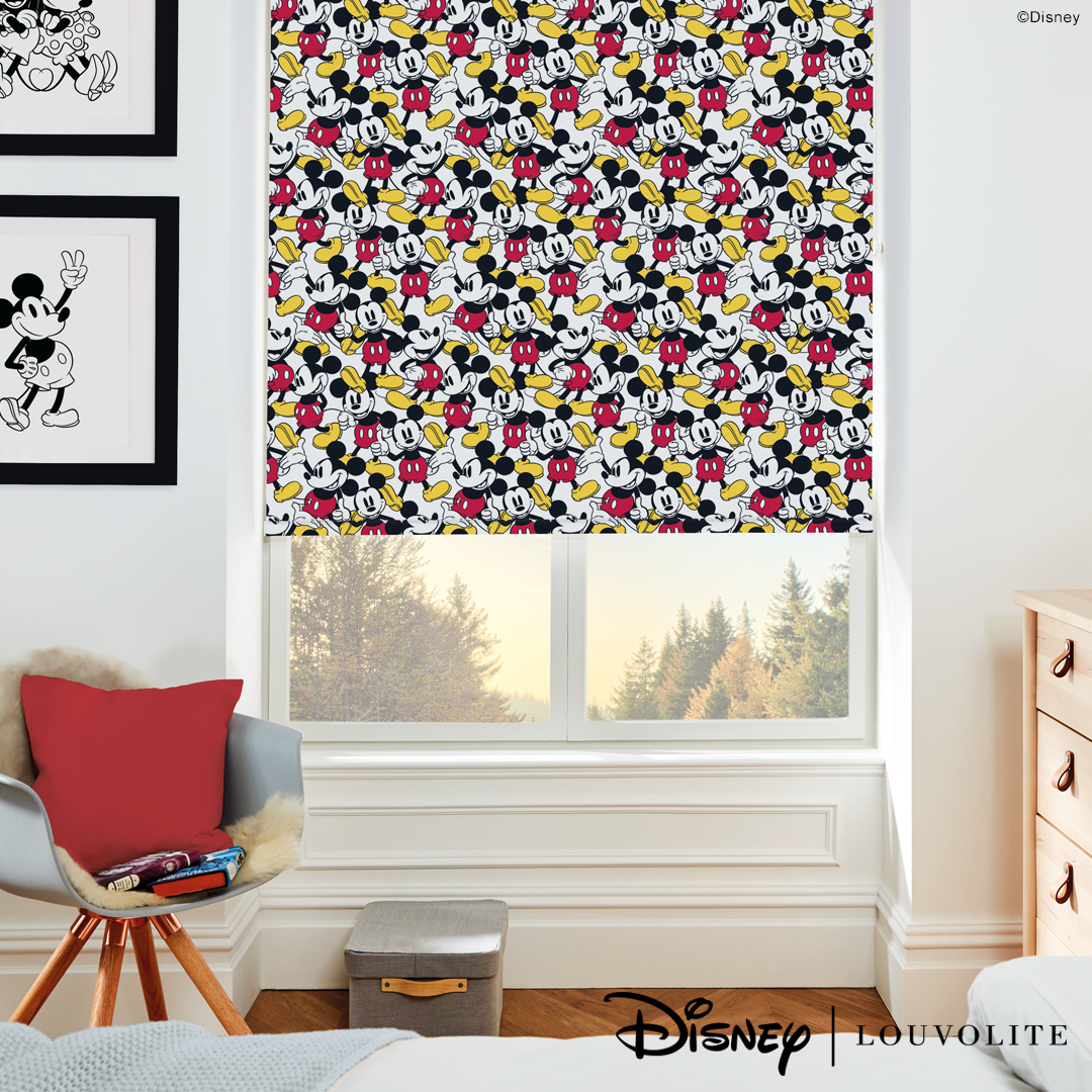 Cassetted Roller Blinds